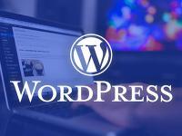 如何查看WordPress网站使用了哪些主题和插件