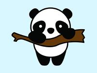 网络推广大熊猫优化三个SEO创意(网站排名飙升)
