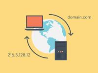 DNS是什么?DNS怎么设置?