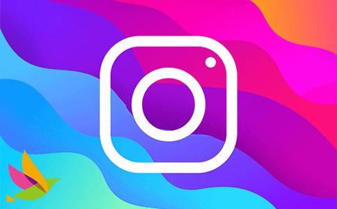 Instagram电脑PC端发帖(详细解读)