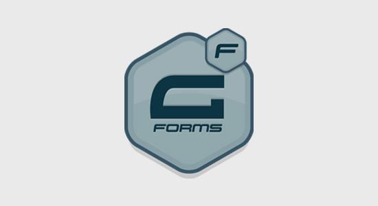 WordPress联系表单插件3. Gravity Forms